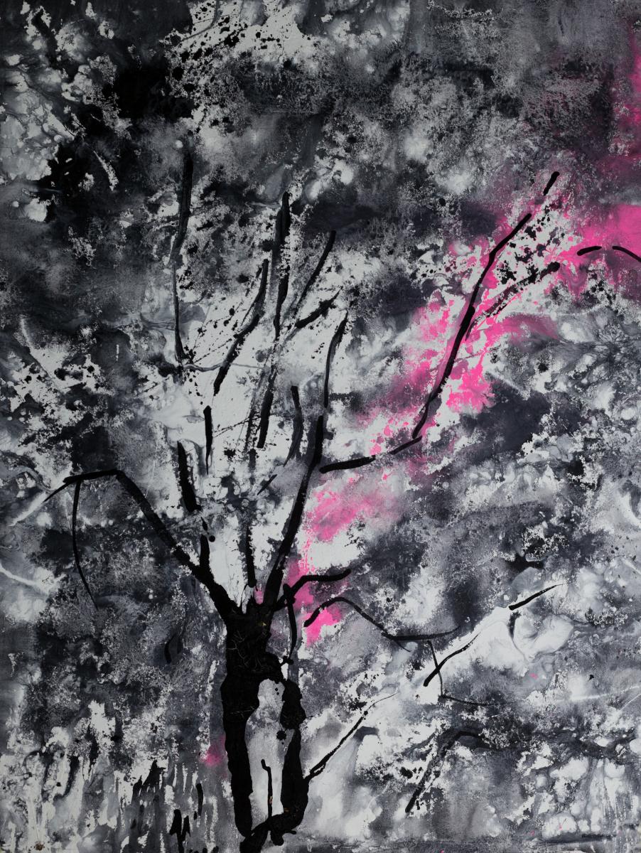Sakura nights